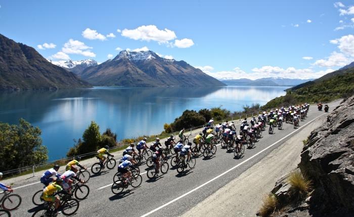 Kampioenschap van Nieuw-Zeeland
