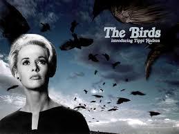 03 the birds