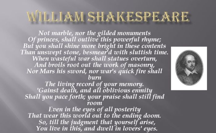 """Essay on """"Eternity though Poetry"""" (WilliamShakespeare)"""