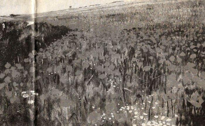 Hongaarse schilderkunst
