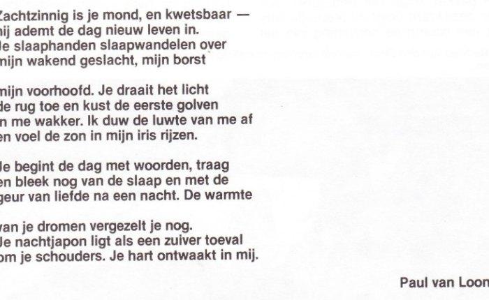 Poëzie van Paul VanLoon