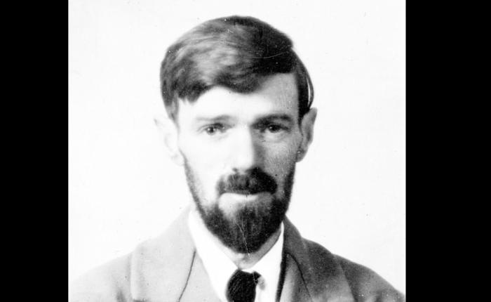 David Herbert Lawrence(1885-1930)