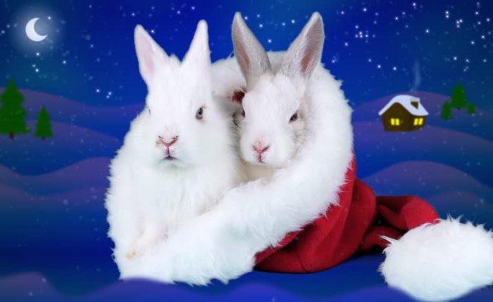 Waarom kerstmis en nieuwjaar niet op dezelfde dagvallen…