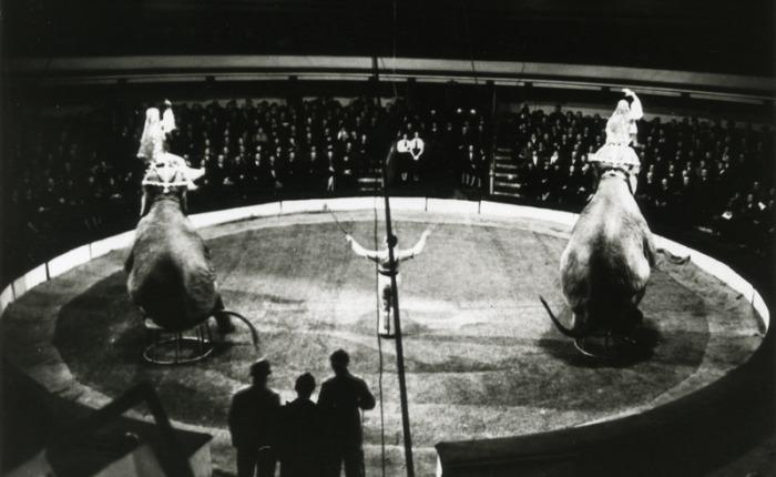 """75 jaar geleden: laatste circus in """"De NieuweCirk"""""""