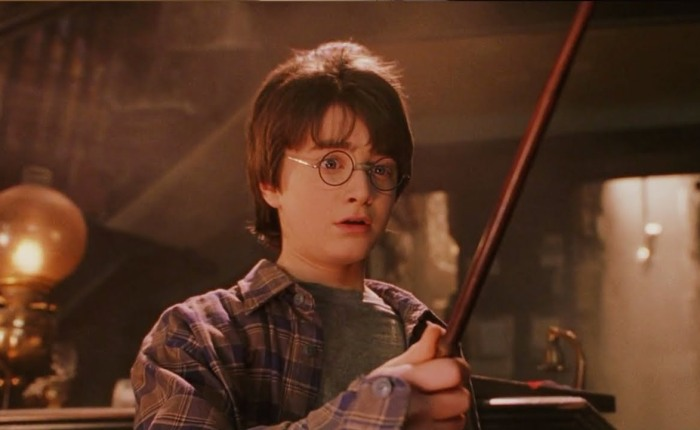 Harry Potter wordtveertig…