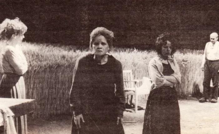 """Dertig jaar geleden: """"Het gezin Van Paemel"""" in hetTolhuis"""